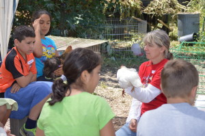 Class on breeds and care of chickens