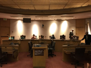 Ellis third graders take on the roles of council members